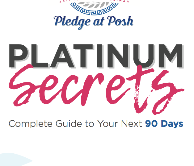 Complete Guide to Your Next 90 Days | Platinum Secrets