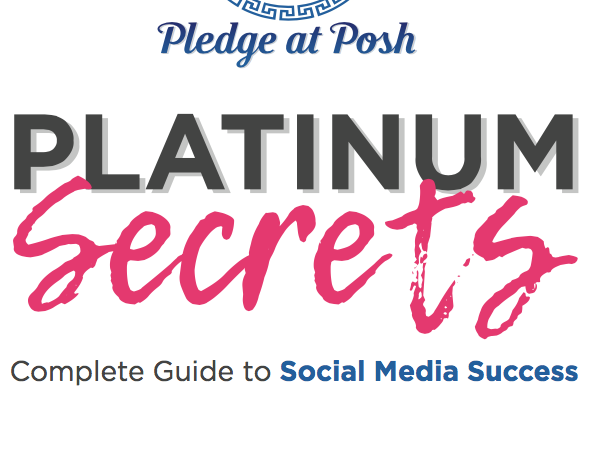 Complete Guide to Social Media Success | Platinum Secrets